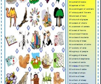 Collective Nouns: Matching Activity