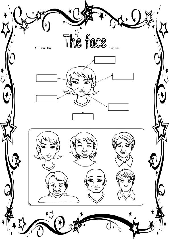 The Face Elementary Worksheet