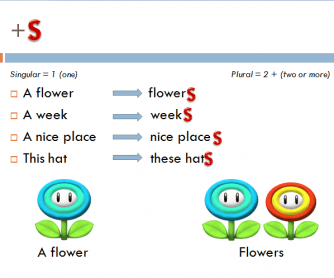 Plural Form of Nouns: PowerPoint Presentation