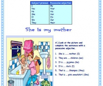 Possessive Adjectives Elementary Worksheet II