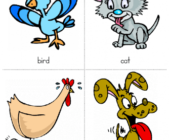 Animal Flashcards for Kids 1st Set