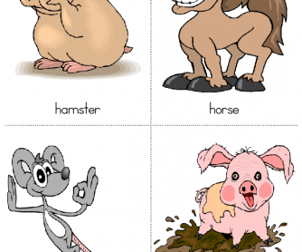 Animal flashcards for kids 2nd Set