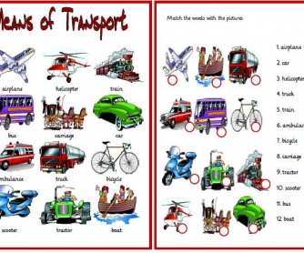 Means of Transport Matching Activity