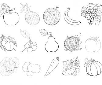 Fruits & Vegetables Cards