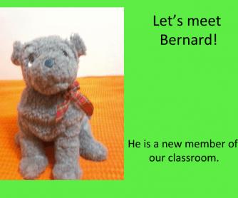 Bernard the Dog: Like - Dislike Worksheet