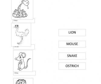 Animal Match Worksheet