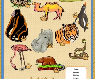Wild Animals Matching Activity
