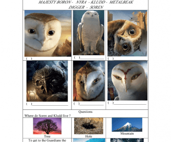 Movie Worksheet: The Legend of the Guardians