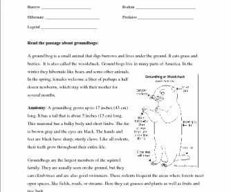 Groundhog Day Activities - Solve and Color Worksheets by Dovie Funk