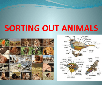 Sorting out Animals