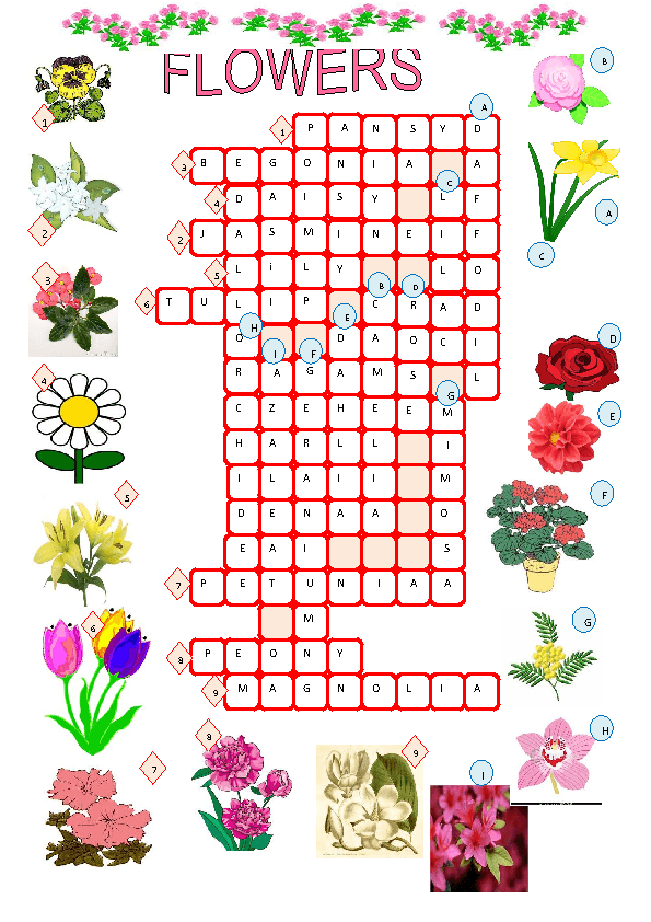 Landscaping Shrubs Crossword : Similar worksheets