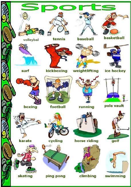 sports person definition