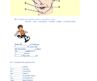 Basic Test: Face Parts and Verb to Be