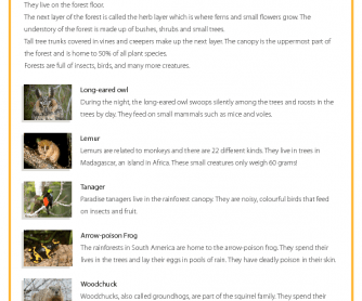 Forest Wildlife - Reading Comprehension