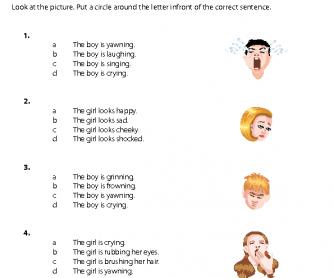 Picture Sentences - Expressions