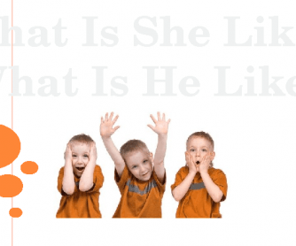 What Is He/She Like? PPT