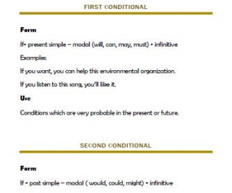 Conditionals Grammar Guide