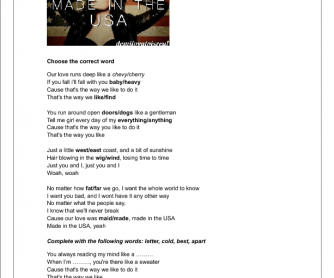 Song Worksheet: Made in the USA by Demi Lovato