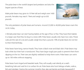 Reading Comprehension - Polar Bears
