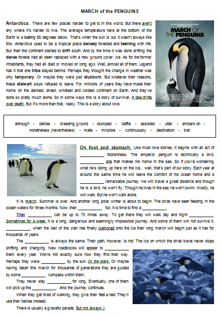 Movie Worksheet  March of the Penguins further Free Penguin Activities For Kindergarten Worksheets Tacky The as well  also Film Education   Resources   Film Liry   March of the Penguins also free printable penguin worksheets as well Penguin Word Search Worksheets   Teaching Resources   TpT additionally How to Draw an African Penguin   Draw to Learn moreover Penguins Theme Unit   Printables and Worksheets together with Teacher Guide moreover 24 Best March Of The Penguins 2 Watch Party DIY Ideas images in 2018 further  moreover 24 Best March Of The Penguins 2 Watch Party DIY Ideas images in 2018 further March of the Penguins besides March of the Penguins   ESL worksheet by l shade212 besides Guided Reading  non fiction  years 4  5 or 6  Penguins by also Teacher Guide. on march of the penguins worksheet