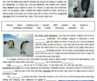 movie worksheet march of the penguins. Black Bedroom Furniture Sets. Home Design Ideas