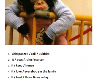Chimpanzee Named Bubbles (Present Simple Passive Warmer)