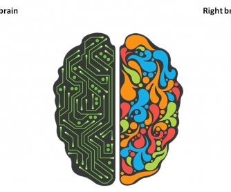 First Day of School Warmer: Your Right and Left Brain