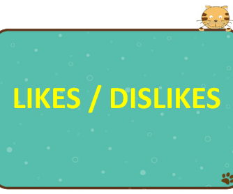 short paragraph on my likes and dislikes