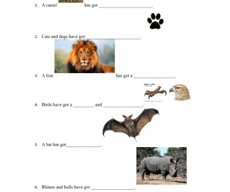Animal Body Parts (Has Got/ Have Got)