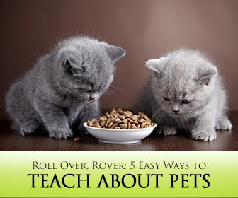Roll Over, Rover: 5 Easy Ways to Teach About Pets