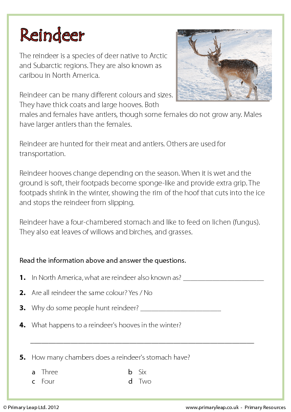 christmas comprehension reindeer