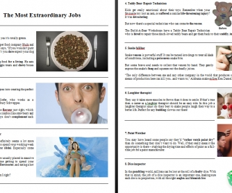 The Most Extraordinary Jobs