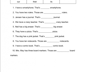 Possessives Pronouns Practice