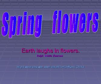 Song Worksheet: I Like Flowers (Spring Flowers)
