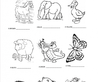 Animals, Colours and Adjectives