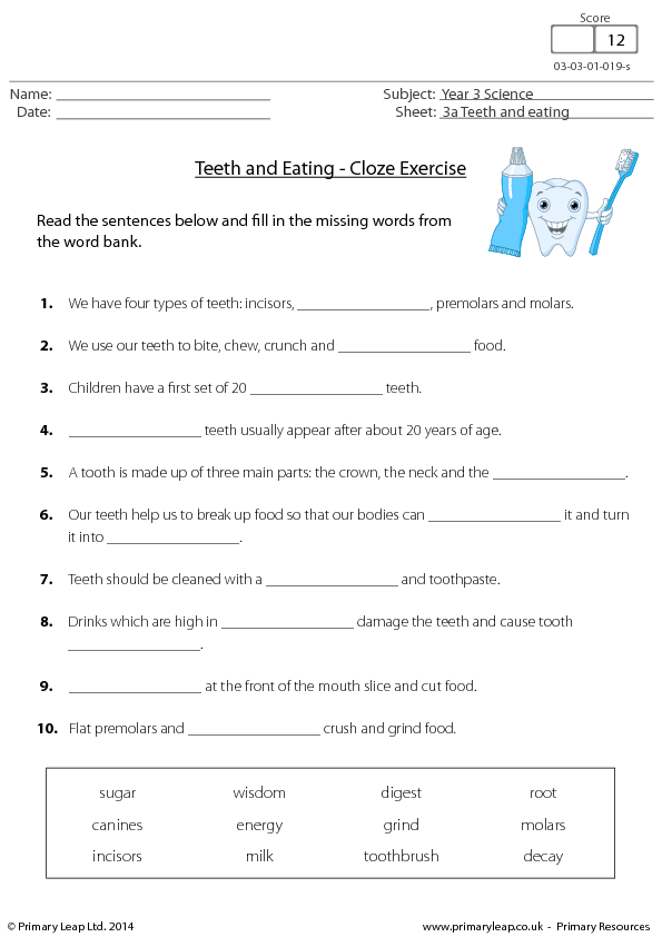 Cloze Exercise Teeth And Eating