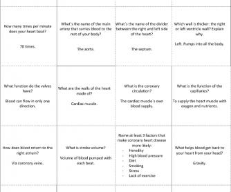 Circulatory System Trivia Quiz (3rd ESO)