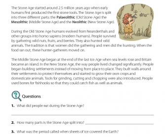 Reading Comprehension - The Stone Age