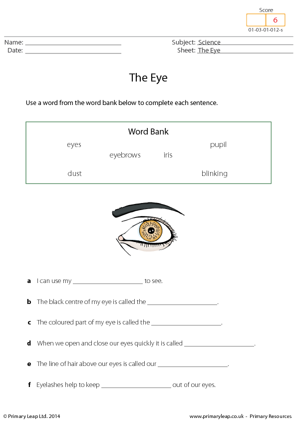How our eyes work by ejanebarnes - Teaching Resources - Tes
