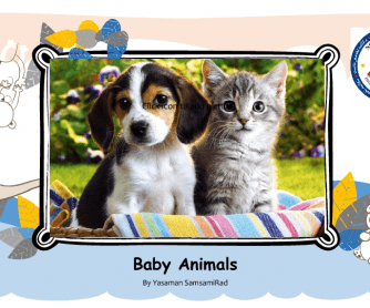Baby Animals PowerPoint