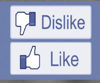 Likes and Dislikes