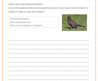 Research Activity - Blackbird