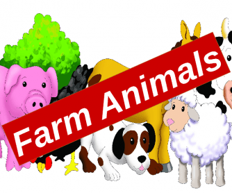 Farm Animals, Present Continuous