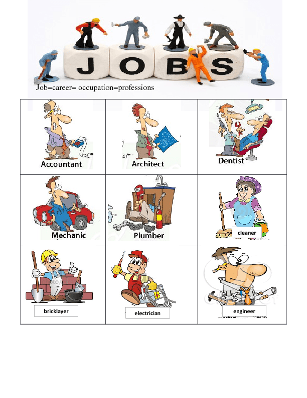 the career and job description of a cartoonist Job description, salaries and (a guide to education and career opportunities in the creative industries) more job descriptions job description.