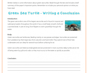 Writing a Conclusion - Green Sea Turtles