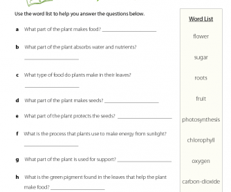 Earth Day - Plant Questions