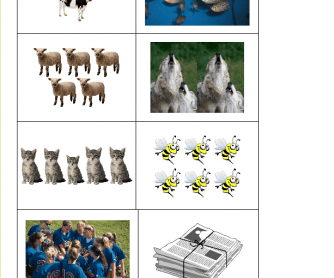 Collective Nouns Memory Cards