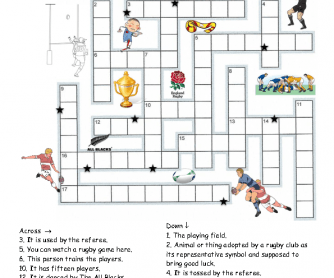 Rugby Puzzle