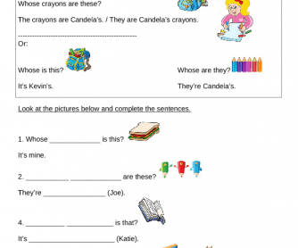 Systematisation and Exercises to Practise Whose, Interrogative Pronouns