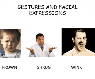 Gestures, Facial Expressions, Ways of Looking and Speaking